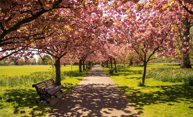 Идеи весенних путешествий