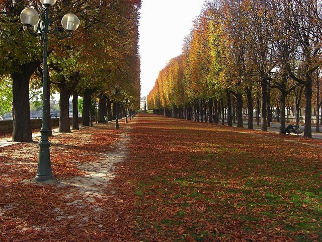поездка в Париж осенью самостоятельно