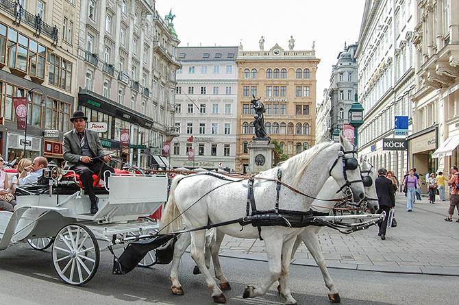 Вена самостоятельно транспорт