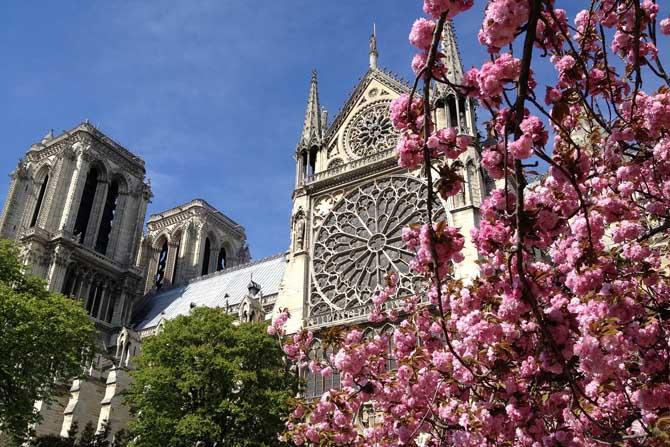 что посмотреть в Париже за 7 дней