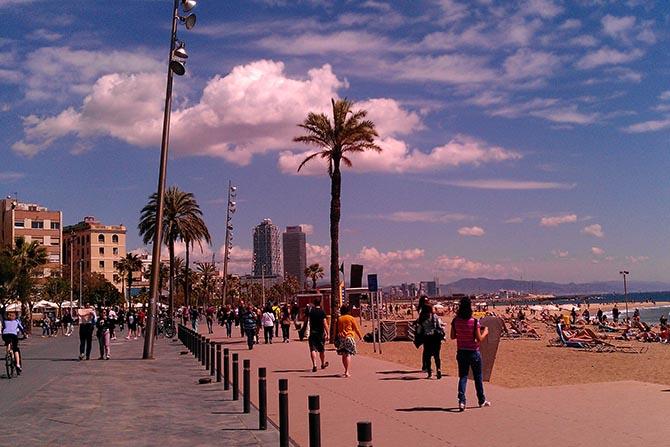 чем заняться в Барселоне самостоятельно