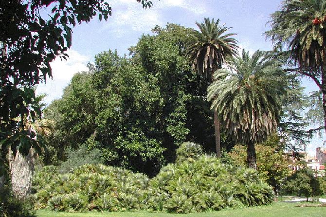 парки Рима фото