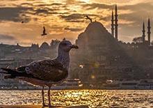 аудиогид по Стамбулу скачать